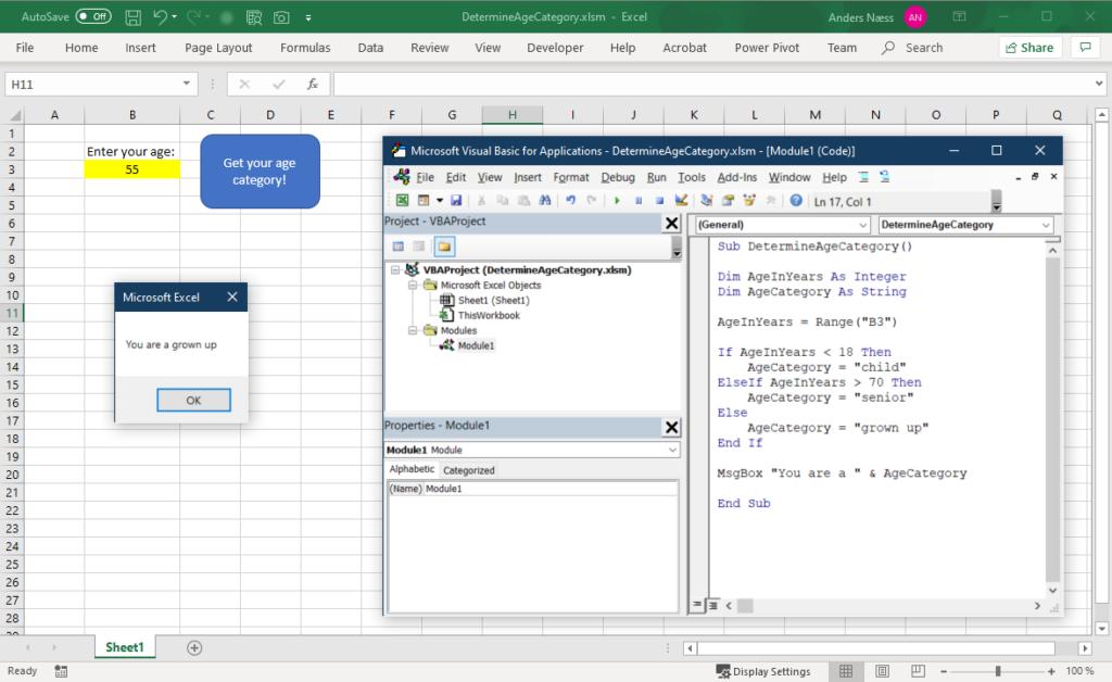 Excel VBA eksempel